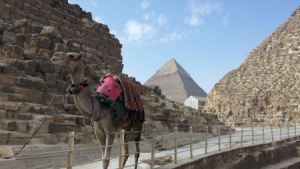 Bulgaria to Cooperate with Egypt in the Sphere of Tourism