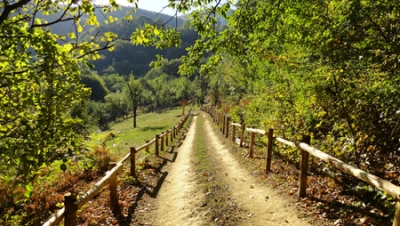 Bulgarian Eco Paths for Tourism (Bulgarian)